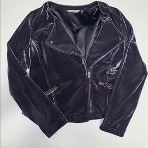 Soft Surroundings moto jacket velvet small NWOT